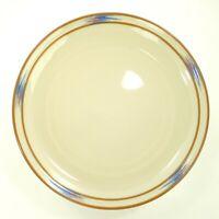 "Noritake Stoneware RAINDANCE 8675 10 1/4"" Dinner Plate"