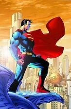 SUPERMAN GICLEE CANVAS PRINT ~ LIMITED TO 100 PIECES Rare ~ COA   SIGNED JIM LEE