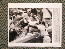 VINTAGE WIRE PHOTO 6/14/59 AL DARK MAKES THE PLAY FOR THE CUBS