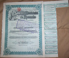 Argentina Belgium 1910 Societe Electricite Rosario 100 fr share Uncancelled coup