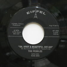 THE PEBBLES Oh, What A Beautiful Dream That Was My Girl Eiffel 45 2085 R&B