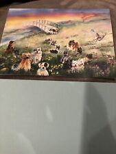 sympathy card For Dogs With Rainbow Bridge Poem