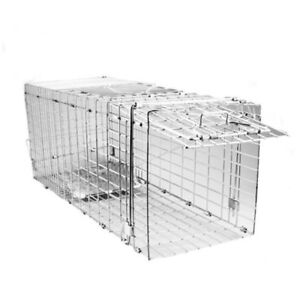 FERAL CAT TRAP Humane Mesh Wire Animal Control Trapping Foldable Metal Cage