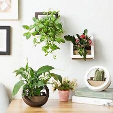 Dahey 2 Pcs Wall Hanging Flower Plant Pot Plastic Planter, Round + Square