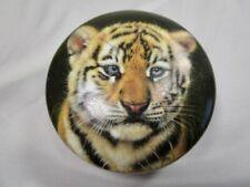 "Princeton Gallery "" Tiger Cub "" Porcelain Music Box - Beautiful"