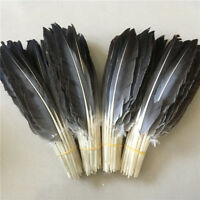 Wholesale 10-100 pcs scarce turkey feathers 10-12 inches/25-30 cm free shipping