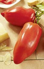 "Andenhorn Tomate ""Cornabel"" - Alte Sorte aus biologischem Anbau"