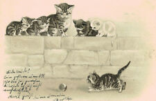 Vintage,Embossed,Cat Postcard,Cat & Kittens on a Wall,Kitten with Ball,Used,1903