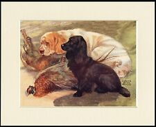 CLUMBER AND COCKER SPANIEL DOGS AND BIRDS DOG ART PRINT MOUNTED READY TO FRAME