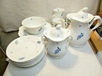 30 vintage Hyacinth Flower Pattern China Set w/ Tea Coffee Pot & Lid good shape