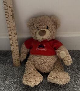 ALTON TOWERS Bear Soft Toy Plush Teddy Bear Magnetic Hands