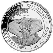 Somalia Elefant 2021 African Wildlife Elephant 1 OZ Silber Silver Argent