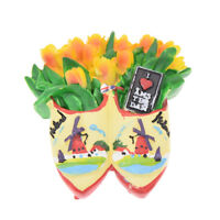 Amsterdam Tulip 3D Resin Fridge Magnet Deco Refrigerator Magnetic Sticker Travel