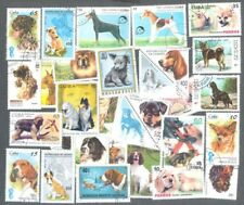 Dogs 100 all different collection