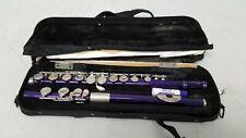 Mendini by Cecilio Purple Flute w/Case