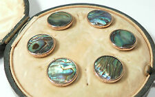 Antique Edwardian Mother of Pearl Stud Buttons studs in original fitted case