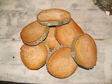 10 Baumscheiben, Holzscheibe, 13-15 cm, Erle