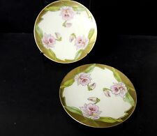 2 PT Bavaria Tirschenreuth Bread and Butter Plates Hand Painted Irises Signed