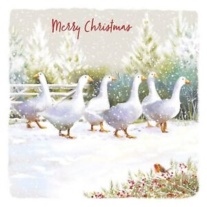 Geese Charity Christmas Cards Pack of 10 Blue Cross for Pets