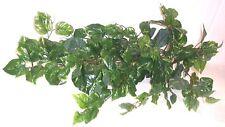 Artificial silk plants & flowers Pothos Bush 80cm  PP13