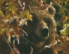 Legend of the Fall by Collin Bogle Grizzly Bear Print 22x28