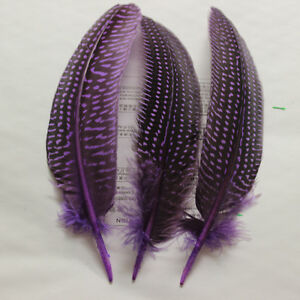 Wholesale 10/20/50/100 PCS 13-20cm/5-8inches carce guinea fowl wing feather DIY