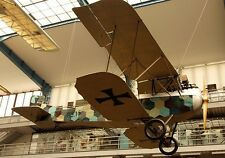 C-II Knoller Austria WW1 Fighter Airplane Wood Model Replica Large Free Shipping