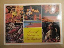 Scenes of Autumn,New England,Maine, USA Postcard, Posted 03.10.00 John Hinde Ltd