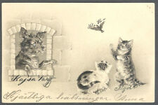 Cats, Cats Playing with a Bird and a Dog Watching Them, Old Embossed Postcard