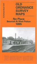 Old Ordnance Survey Mappa nessun luogo, Beamish & West Pelton 1895