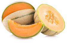 100% Melon musk Essential Oil Cucumis melo Artisanal Natural Carrier grade A1