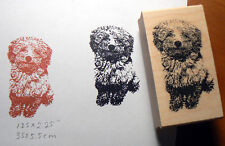 "P15 Toy Poodle 2.25x1.25"" WM rubber stamp"