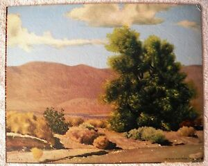 Desert Foliage by Bender - Canvas Style Lithograph