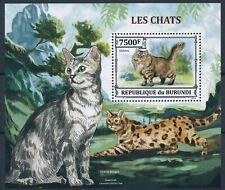 [1289] Burundi 2013 Cats good Sheet very fine MNH