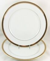 LARGE DINNER PLATE ROBERT HAVILAND PARLON LIMOGES CHAMBORD RAISED GOLD PLATINUM