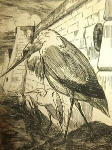 Félix BRACQUEMOND 1833-1914 GRAVURE EAU FORTE ORIGINALE CIGOGNE OISEAUX BARBIZON