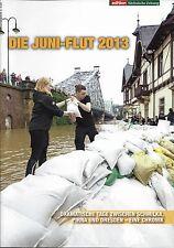 Die Juni-Flut 2013, zwischen Schmilka, Pirna und Dresden
