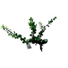 Plant On Wood Natural Look Artifical Aquarium Decor Plant