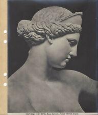 Brogi 5106a. NAPOLI Museo Nazionale. Venere Vittoriosa (Capua)