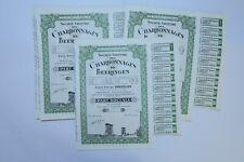 SOCIETE DES CHARBONNAGES DE BEERINGEN PART SOCIALE 1949 X 60 ACTIONS