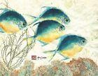 "Pompanito - Gyotaku Archival Fish Print 17"" X 22"""