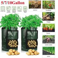 Potato Grow Bags Plant Container DIY Planter Fabrics Pots Vegetable Garden Tools