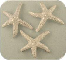 2 Hole Beads Starfish ~ Ocean Life Animal Beach Aquatic ~ Silver Sliders QTY 3