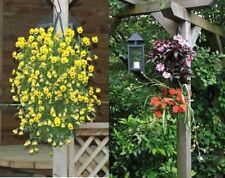 Pflanzbeutel Kaskade,Blumenampel, Pflanzgefäß 3 Stck.8 Pflanzlöcher,Pflanzbeutel