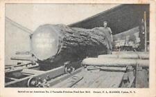 AMERICAN SAW MILLS UPTOWN NEW YORK LOGGING ADVERTISING POSTCARD (1913)