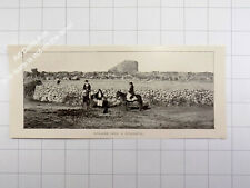 1912 Sardegna , Abbasànta Abbasanta Nuraghe Losa Megalitico Sardaigne / Sardinia