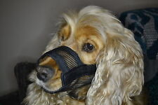 S Dog Safety Muzzle in Soft Nylon - Dog/Puppy/Cat/Kitten/Animal/Care/Gift!