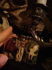 BONES & BLOOMS VICTORIAN TAXIDERMY HALLOWEEN LOT dried flowers REAL SKULL