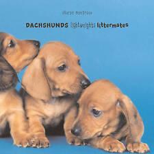 New Dachshund Dog Book Dachshunds: Lightweights Littermates Hardback