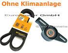 correa trapezoidal + Polea Tensora Renault Clio Kangoo Megane Scenic 1.4/1.6